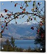 Berry Good View Acrylic Print