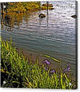 Berry Hill Pond In Gros Morne Np-nl Acrylic Print