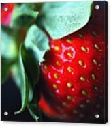 Berry Red Acrylic Print