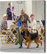 Best In Show Competition Acrylic Print