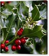 Best Of Holidays Acrylic Print