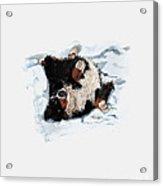Best Snow Angel Phone Acrylic Print
