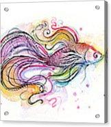 Betta Fish Watercolor Acrylic Print