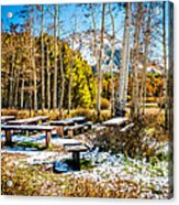 Better Re-think That Picnic Acrylic Print