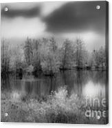 Between Black And White-24 Acrylic Print
