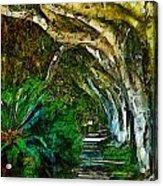 Beverly Hills Jungle Acrylic Print by Cary Shapiro
