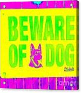 Beware Of Dog Acrylic Print