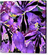 Beware The Midnight Garden Acrylic Print