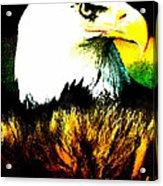 Beyond Eagle View Acrylic Print