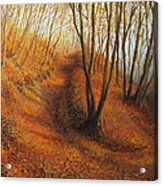 Beyond Silence Acrylic Print