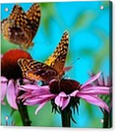 Bff Best Friend Flutterbyes Acrylic Print