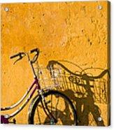 Bicycle 07 Acrylic Print