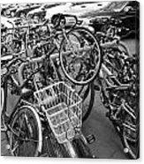 Bicycle 5 Acrylic Print