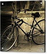 Bicycle Acrylic Print by Amr Miqdadi