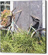 Bicycle Basket Of Flowers Painterly Effect Acrylic Print