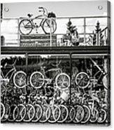 Bicycle Heaven Acrylic Print