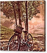 Bicycle In The Park Acrylic Print