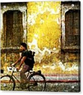 Bicycle Textures Acrylic Print