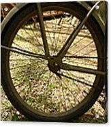 Bicycle Tire Acrylic Print