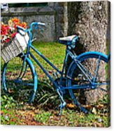 Bicycle With Basket Of Flowers Acrylic Print