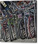 Bicycles For Rent Acrylic Print