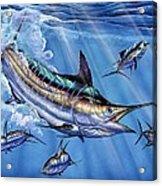 Big Blue And Tuna Acrylic Print by Terry Fox