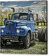 Big Blue Mack Acrylic Print