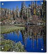 Big Cottonwood Canyon  Acrylic Print by Richard Cheski