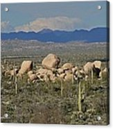 Big Granite Boulder In The Desert Acrylic Print