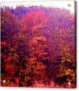 Big Hill Autumn Acrylic Print