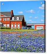Big Red House On Bluebonnet Hill Acrylic Print