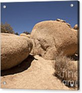 Big Rock Acrylic Print