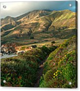 Big Sur Trail At Soberanes Point Acrylic Print