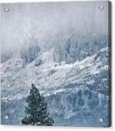 Big Tree At The Mountains Acrylic Print