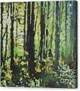 Bigfoot Sighting Acrylic Print