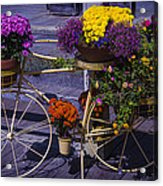 Bike Planter Acrylic Print