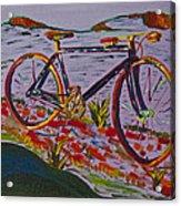 Bike Study Acrylic Print