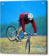 Bike Stunt Acrylic Print