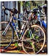 Bike Trek Acrylic Print