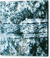 Bikesnowprint 2009 Acrylic Print