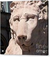 Biltmore Lion Acrylic Print
