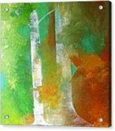 Birch In Fall Colors Acrylic Print
