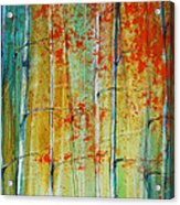 Birch Tree Forest Acrylic Print