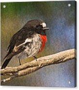 Bird 1 Acrylic Print