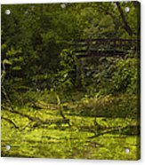 Bird By Bridge In Forest Merged Image Acrylic Print