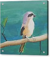 Bird By The Lake Acrylic Print