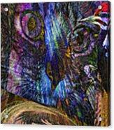 Bird Cage Acrylic Print