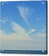 Bird Cloud Acrylic Print