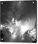 Bird Cloud Acrylic Print