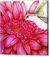 Bird In Bloom Acrylic Print